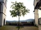 Schweiz_Solothurn-2014_04